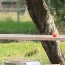 Handmade Table Balance
